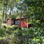 A house in the woods, Dalsland