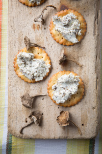 Winter chanterelle & stilton pate